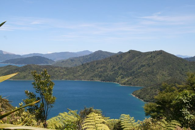 New Zealand South Island Queen Charlotte Track