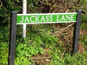 jackass lane