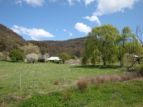 blue mountains farm